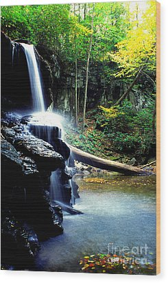 Autumn Upper Falls Holly River Wood Print by Thomas R Fletcher