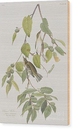 Autumnal Warbler Wood Print by John James Audubon