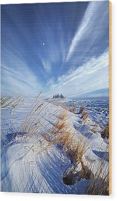 Wood Print featuring the photograph Azure by Phil Koch