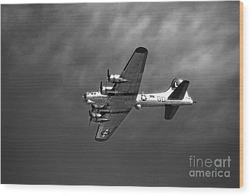 Wood Print featuring the photograph B-17 Bomber - Infrared by Thanh Tran