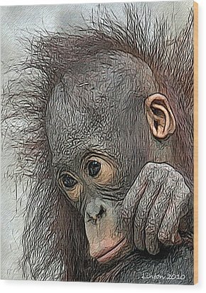 Bad Hair Day Wood Print by Larry Linton