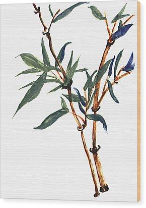 Bamboo Wood Print by Merton Allen