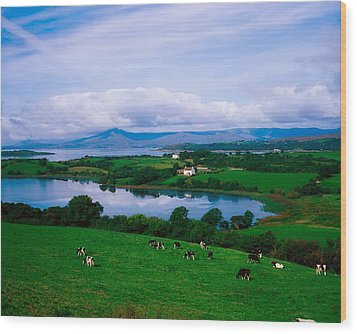 Bantry Bay, Co Cork, Ireland Wood Print by The Irish Image Collection