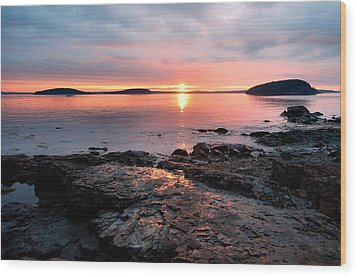Bar Harbor Sunrise Wood Print by Stephen  Vecchiotti