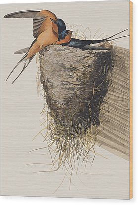 Barn Swallow Wood Print by John James Audubon