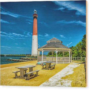 Wood Print featuring the photograph Barnegat Lighthouse Park by Nick Zelinsky