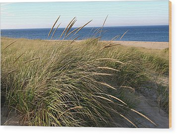 Beach Grass At Truro Wood Print by Frank Russell