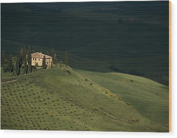 Belvedere House Wood Print by Andrew Soundarajan