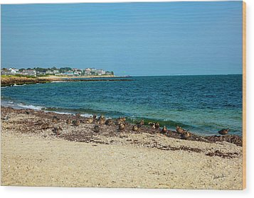 Wood Print featuring the photograph Birds On The Beach by Madeline Ellis