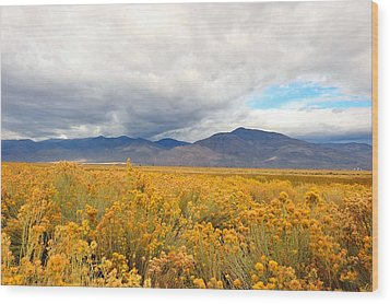 Wood Print featuring the photograph Bishop California  by Dung Ma