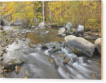 Wood Print featuring the photograph Bishop Creek In The Fall by Dung Ma