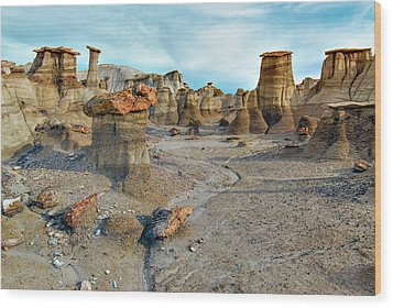 Bisti Wilderness Hoodoos Wood Print by Alan Toepfer