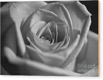 Wood Print featuring the photograph Black And White Rose by Micah May