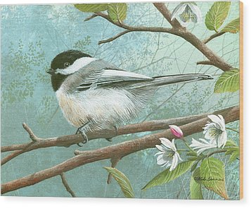 Black Cap Chickadee Wood Print