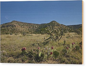 Wood Print featuring the pyrography Black Mesa Cacti by Charles Warren