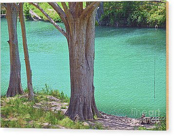 Blanco River Texas Wood Print by Ray Shrewsberry