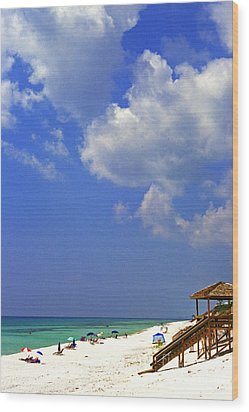 Blue Mountain Beach Wood Print by Thomas R Fletcher