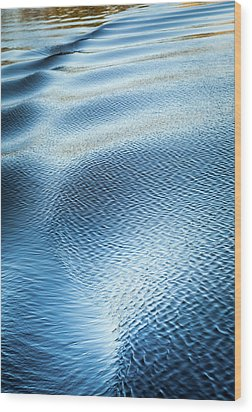 Wood Print featuring the photograph Blue On Blue by Karen Wiles