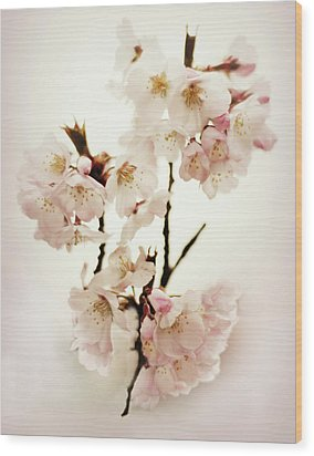 Wood Print featuring the photograph Blushing Blossom by Jessica Jenney