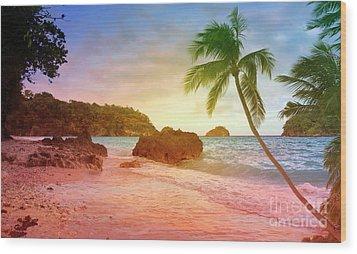 Boracay Philippians Wood Print by Mark Ashkenazi