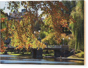 Wood Print featuring the photograph Boston Public Garden - Lagoon Bridge by Joann Vitali