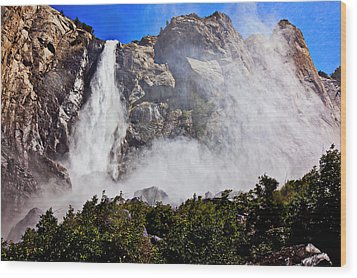 Bridalveil Fall Yosemite Valley Wood Print by Garry Gay