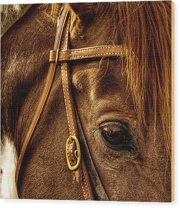 Bridled Wood Print by David Patterson