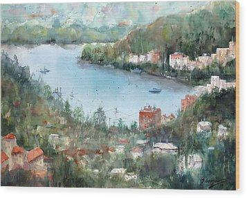 Brisbane View #1 Wood Print