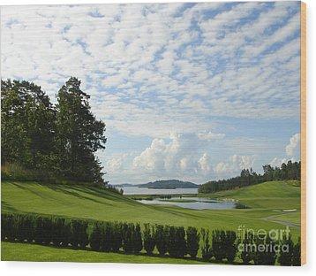Bro Hof Slott Golf Club Sweden Wood Print by Jan Daniels