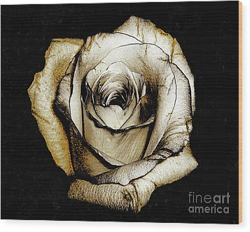 Wood Print featuring the photograph Brown Rose - Digital Painting by Merton Allen