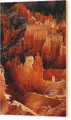 Bryce Canyon Wood Print by Harry Spitz