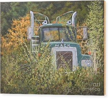Bulldog In The Bushes Wood Print by Paul K Hill