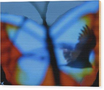 Butterfly Birds Collection  Wood Print by Debra     Vatalaro