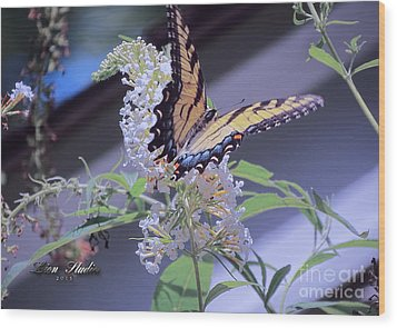 Butterfly Bush ,butterfly Included Wood Print by Melissa Messick