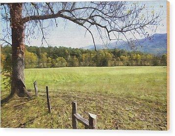 Cades Fence Wood Print