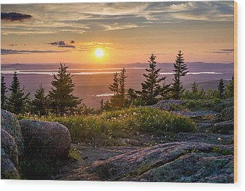 Cadillac Mountain Sunset  Wood Print