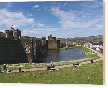 Caerphilly Castle Wood Print by Andrew Read