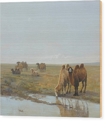 Camels Along The River Wood Print