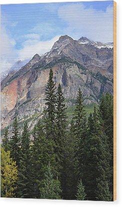 Canadian Rockies No. 2-1 Wood Print