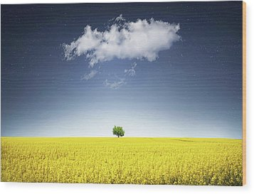 Wood Print featuring the photograph Canola Field by Bess Hamiti