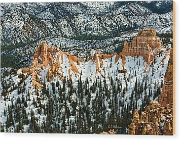 Canyon View Wood Print by Christopher Holmes