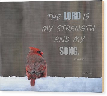 Cardinal In The Snowstorm With Scripture Wood Print