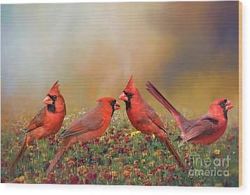 Cardinal Quartet Wood Print by Bonnie Barry