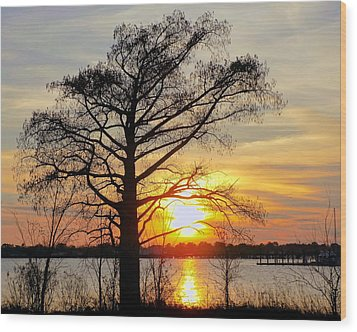 Carolina Sunset Wood Print by Victor Montgomery
