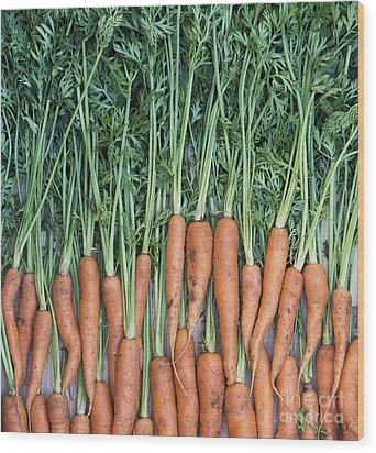 Carrots Wood Print by Tim Gainey