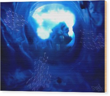 Cave Dive Wood Print by Steed Edwards