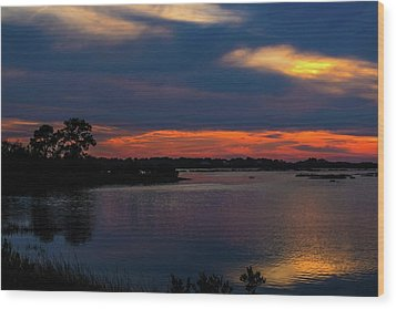 Wood Print featuring the photograph Ceader Key Florida  by Louis Ferreira