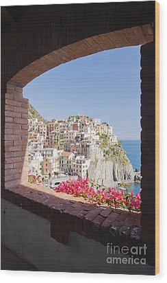 Cinque Terre Town Of Manarola Wood Print by Jeremy Woodhouse