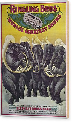 Circus Poster, C1899 Wood Print by Granger