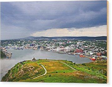 Cityscape Of Saint John's From Signal Hill Wood Print by Elena Elisseeva